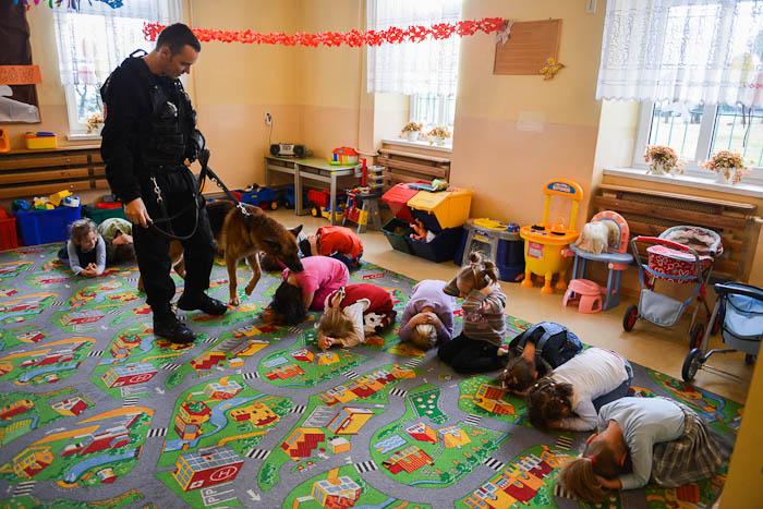 Pies policyjny i przewodnik w trakcie zajęć w przedszkolu