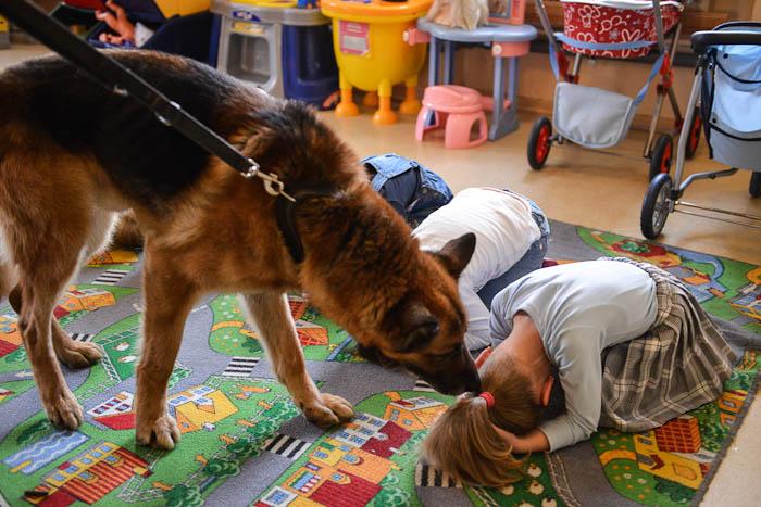 Pies policyjny wsród dzieci w przedszkolu