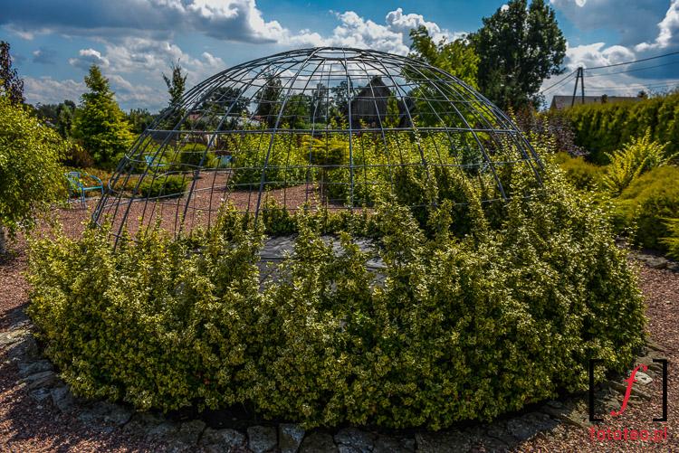 Piękne fotografie ogrodów