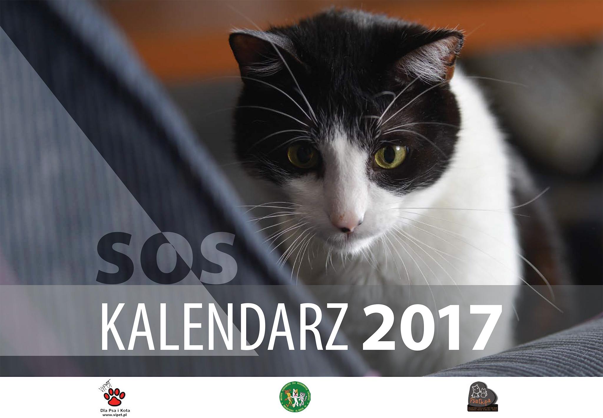 Kalendarz charytatywny 2017. Psia Ekipa. Schronisko Bielsko-Biala